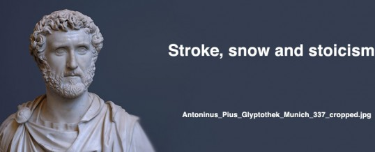December 2010: Stroke, snow and stoicism